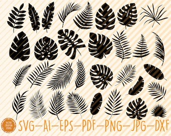 Tropical Leaves Etsy Download the perfect tropical leaves pictures. tropical leaves etsy