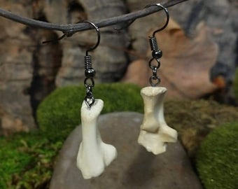 Raccoon Calcaneus Bone Earrings