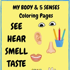 Human Body For Kids Printable Coloring Pages Cool Educational Etsy