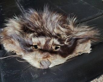 Real Raccoon Fur Face