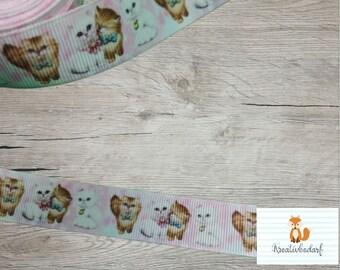 Webband Borte Bordüre Zierband Katzen Kätchen Cats 15 mm