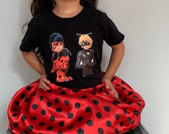 Anniversary LADYBUG skirt  outfit embroidery
