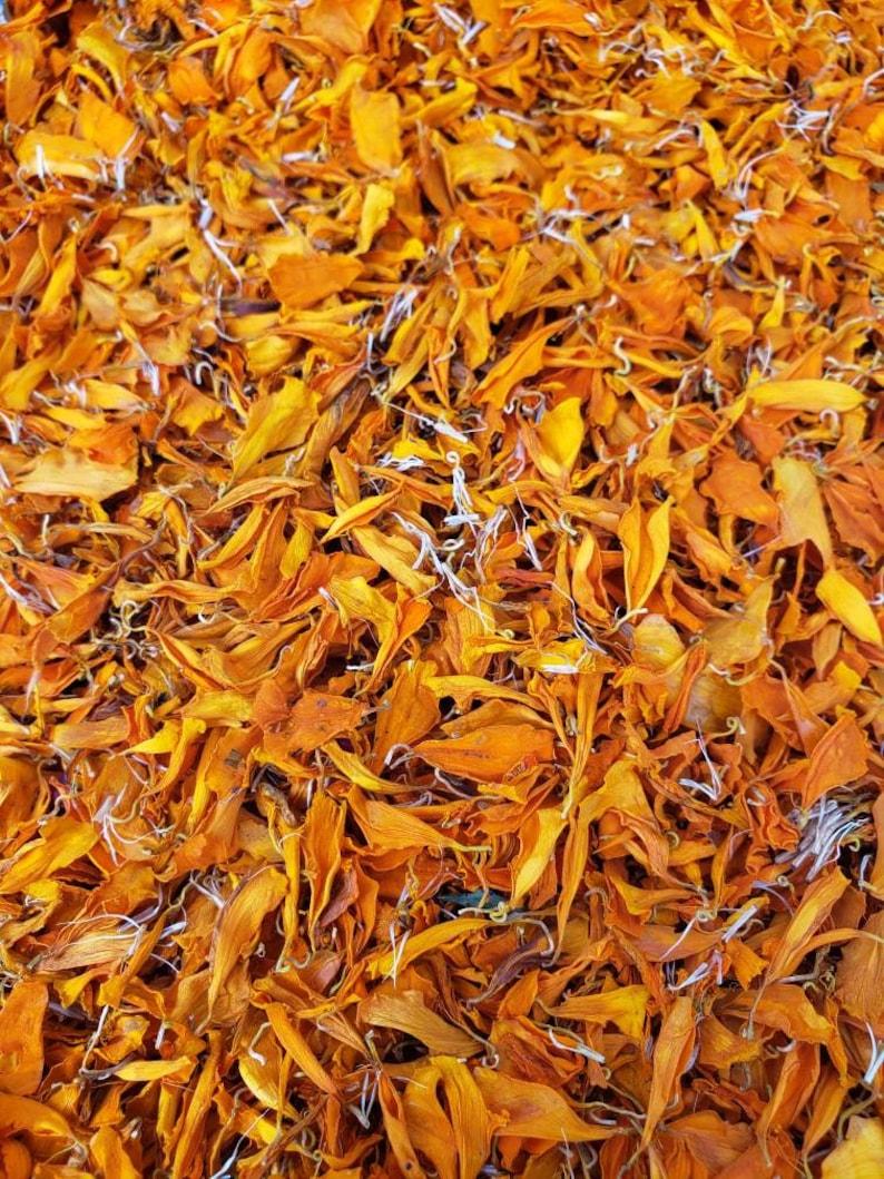 Dried Orange Marigolds image 0