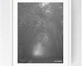 Moor Park Avenue on a Foggy September Morning, Large Art Print, Preston, Prestonian, Moor Park, Lancashire, Black and White