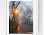 Moor Park Avenue on a Winter's Morning, Large Wall Art Print, Moor Park, Colour, Winter, Lancashire, Atmospheric, Preston