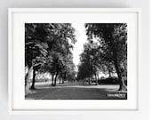 Haslam Park Avenue, Large Wall Art Print, Preston, Prestonian, Black and White Print, Summer
