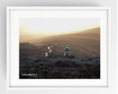 Pendle Hill, Large Wall Art Print, Witches, Colour, Winter, Witches Hill, Lancashire, Yellow Brick Road