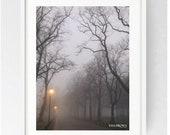 Moor Park Avenue in the Mist, Large Wall Art Print, Preston, Prestonian, Colour, Winter, Moor Park, Moor Park Preston, Deepdale, Atmospheric