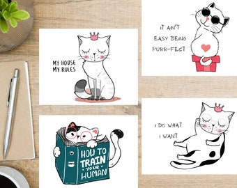 Funny Cat Greetings Postcard Set   4 Postcards   130 Thick Cardstock
