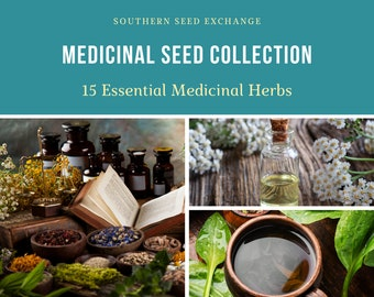 Medicinal Herb Seed Collection - 15 Essential Herbs - Non-GMO - Over 1,600 Seeds!!!!