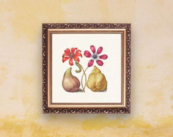 Medieval Classics: Caterpillar | Square Print | Wall Art | Medieval Art | Renaissance Wall Art | Art Print | Office Décor