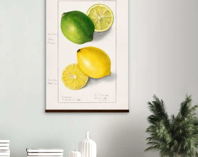 Vintage Lemons Poster with wooden hanger | Rare and Special Collections | Wall art | Art prints | Over the bed wall decor