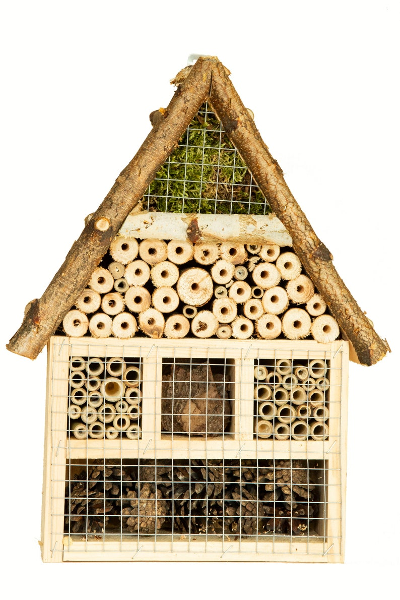 Insect Hotel Bug Hotel Insect House Handmade of Pine Birch image 0
