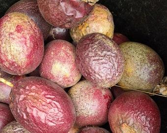 Bulk Bin 5lbs Passion Fruit purple