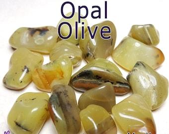 Opal Olive (Kenya) MEDIUM Tumbled Gemstone - 1, 3, or 5 pack - 20 to 25mm or 0.7 to 1 inch - Natural Healing Reiki Chakra