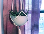 Beetlejuice Tasseled Hanging Planter