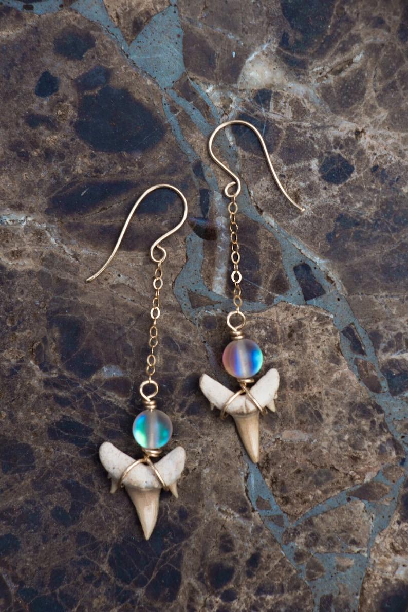 Shark tooth earrings image 0