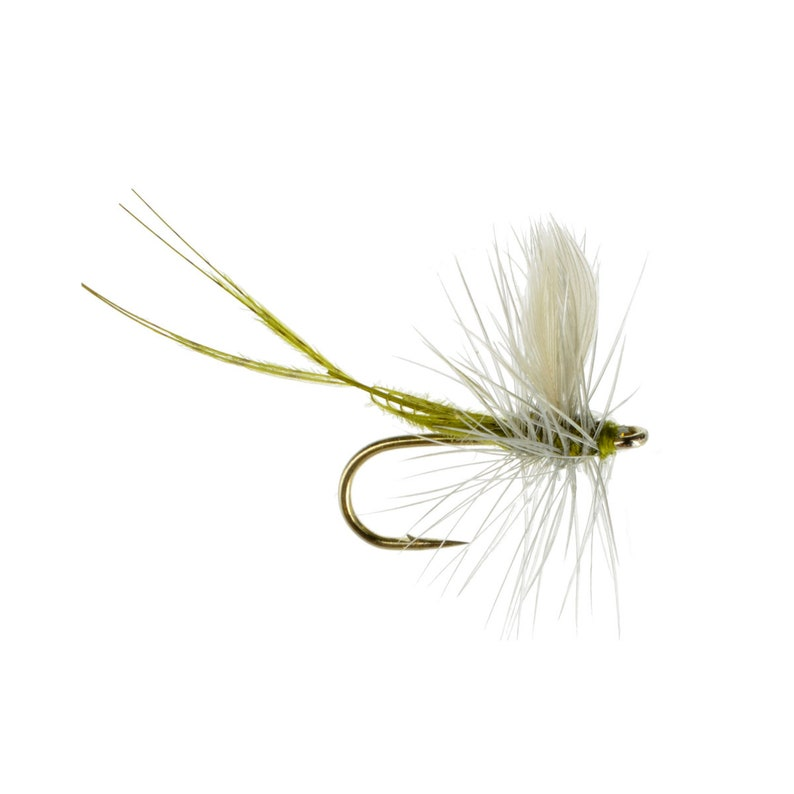 Hand Tied Dry Fly Pattern Fly Fishing Flies Masterclass Blue Winged Olive Dry Fly