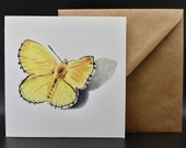 Postcard of a yellow butterfly with a cast shadow