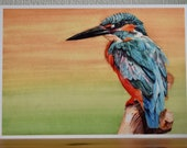 A4 print of a kingfisher with orange and green background