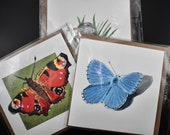 Mix and match three square postcards of butterflies and birds