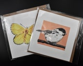 Mix and match two square postcards of butterflies and birds