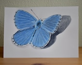 Blue butterfly original illustration made with watercolour paints and coloured pencils
