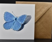 Postcard of a blue butterfly with a cast shadow