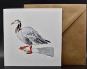 Postcard of an bar-headed goose