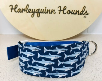 Australian Wildlife Eclectus Parrot Whippet  or greyhound Martingale dog collar