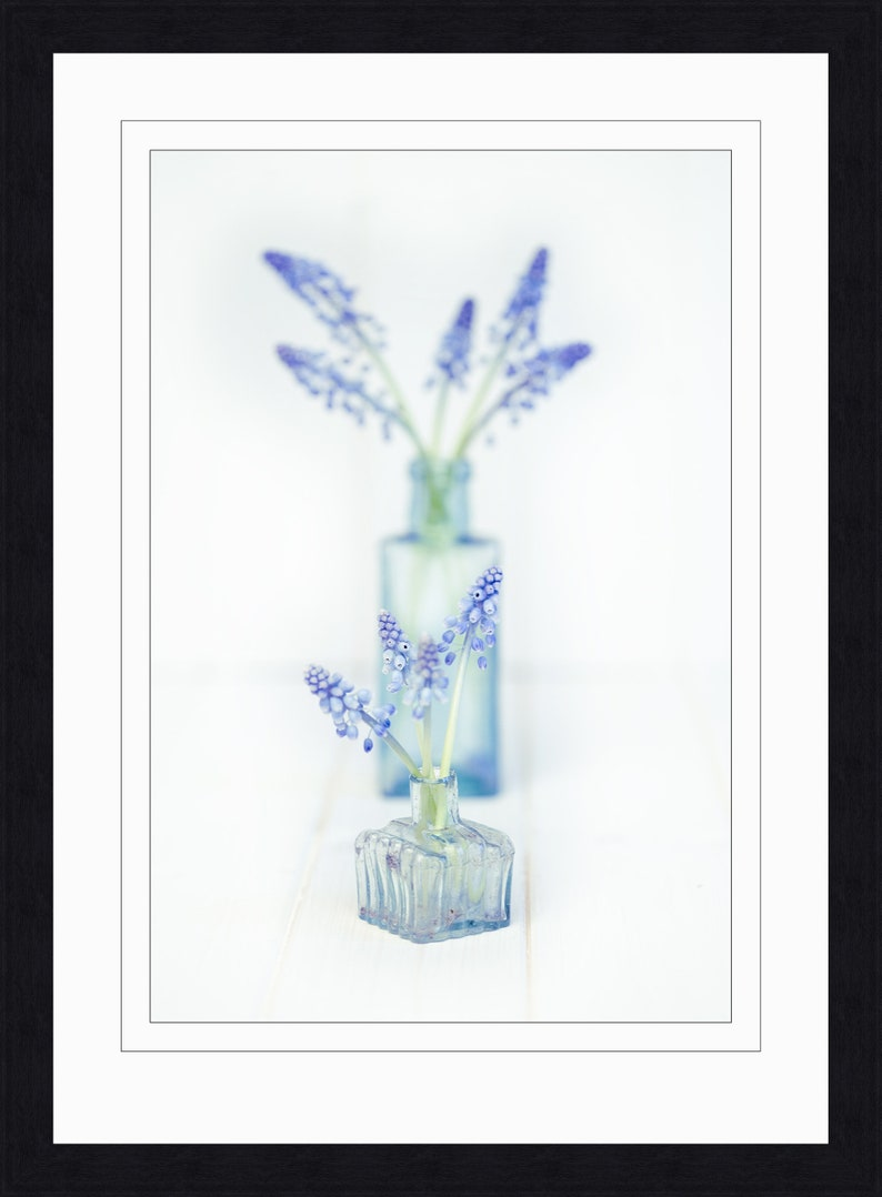 Blue Tones Flower Wall Hangings colourful Flower Photography Flower Photo Print. Fine Art Flower Print Unframed Flower Photography