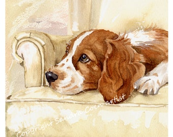 SUSSEX SPANIEL DOG OIL PAINTING PRINT GLASSES CASE POUCH  SANDRA COEN ARTIST