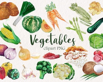 Vegetables PNG Clip Art in Watercolor, Printable, Downloadable,