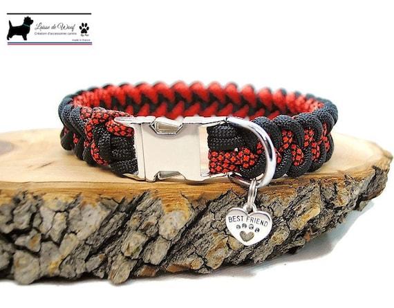 Dog collar Shark Hallo - width 2cm - Wouf leash