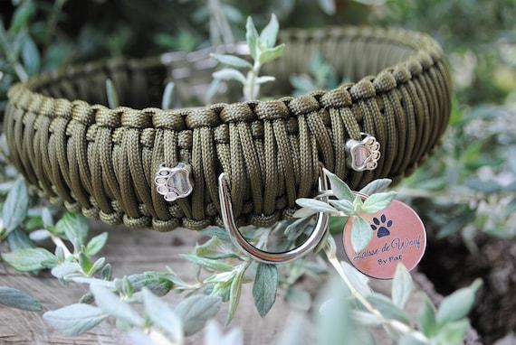 Collar dog Paw - width 4cm - wouf leash