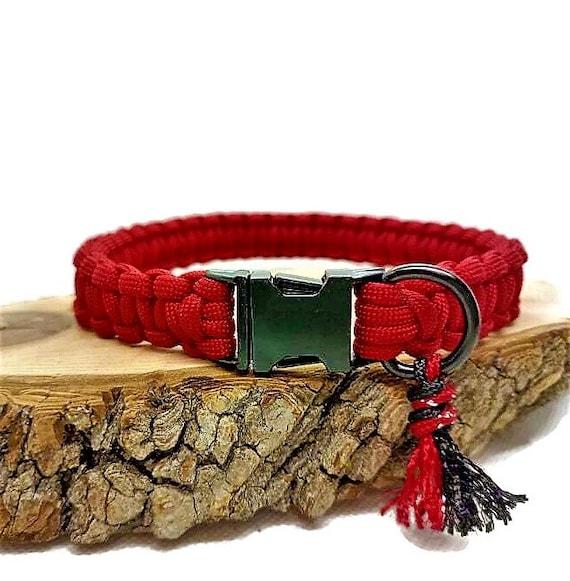 Dog collar Petit Diablotin - width 2cm - Wouf leash
