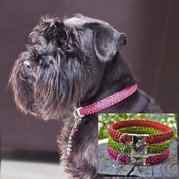 Collar dog Collection Neon - width 1.5cm - Leash of wouf