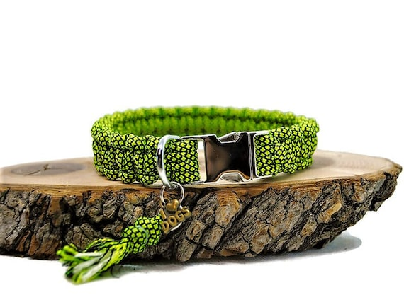 Collar dog Neon green - width 2cm - Leash of wouf