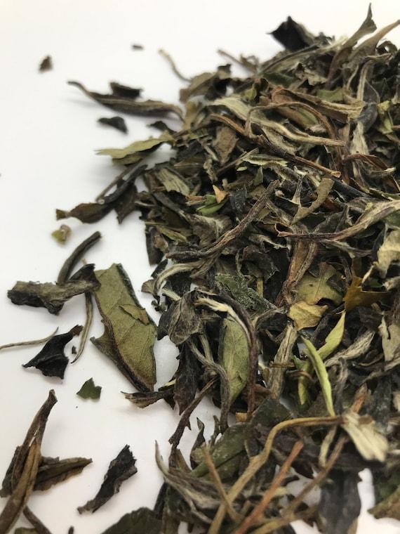 Loose leaf tea, Pai mu tan white tea