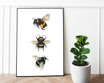 Bee Print - Bee Art - Bumblebee print - A5 Art - A6 Art - Bee Wall Art - Bee painting - Bee gift - Bee birthday gift - Nature Art Print