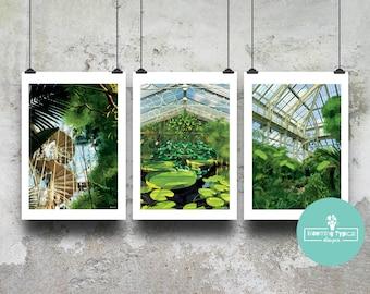 Set of 3 Kew Gardens Prints / Royal Botanic Garden London Art - Tropical Jungle Print - Botanical Plants - Glasshouse - Christmas Gift