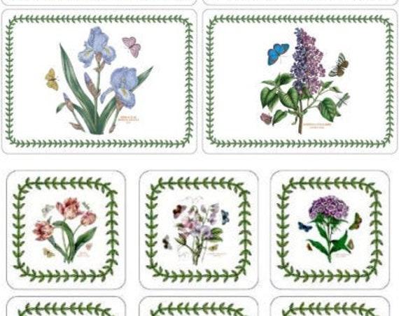 Coaster Placemat Set New Botanic Garden 2021