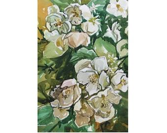 Jasmine Blossom Watercolor Painting by Vilebedeva. Handmade Original Painting