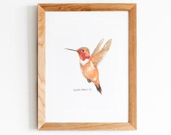 Rufous Hummingbird Watercolor Art Print, 5X7