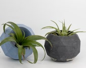 Concrete Medium Sphere Geometric Planter / Pot / Holder / Air Plant / Succulent / Outdoor / Indoor / Cacti / Candle / Decor / 2inch plant