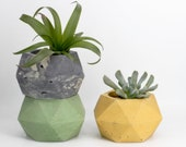 Concrete Medium Twisted Geometric Planter / Pot / Holder / Air Plant / Succulent / Outdoor / Indoor / Cacti  / 2inch plant