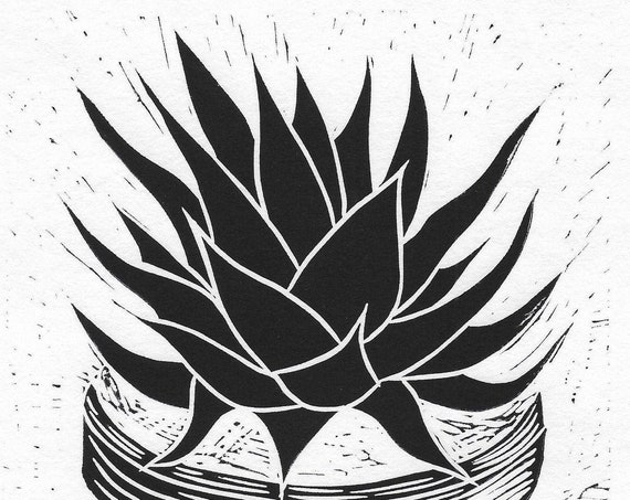 Limited Edition Lino Print of a  Potted Succulent. Houseplants, Interiors
