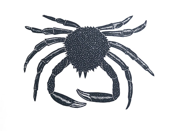 Limited Edition Lino Print of a Spider Crab. Food & Drink, Kitchen, Coastal, Cornwall, Cornish