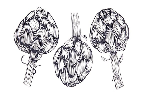 Limited Edition Lino Print A Trio of Artichokes. Allotments, Vegetables, Gardening, Food and Drink