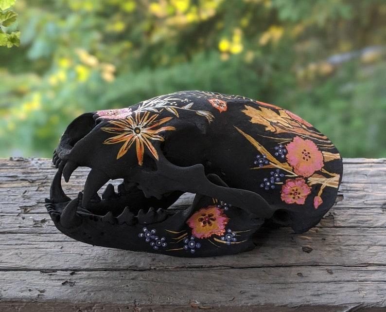 Matte Black with Florals Hand Painted Badger Skull OOAK image 0